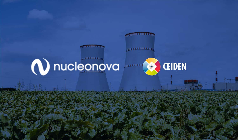 NUCLEONOVA PARTICIPA EN LA 37ª REUNIÓN DEL CONSEJO GESTOR DE LA PLATAFORMA TECNOLÓGICA DE ENERGÍA NUCLEAR DE FISIÓN (CEIDEN)